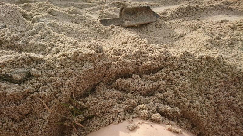 砂に埋まる